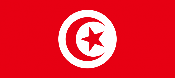 Flag of Tunisia (Source: Wikipedia)